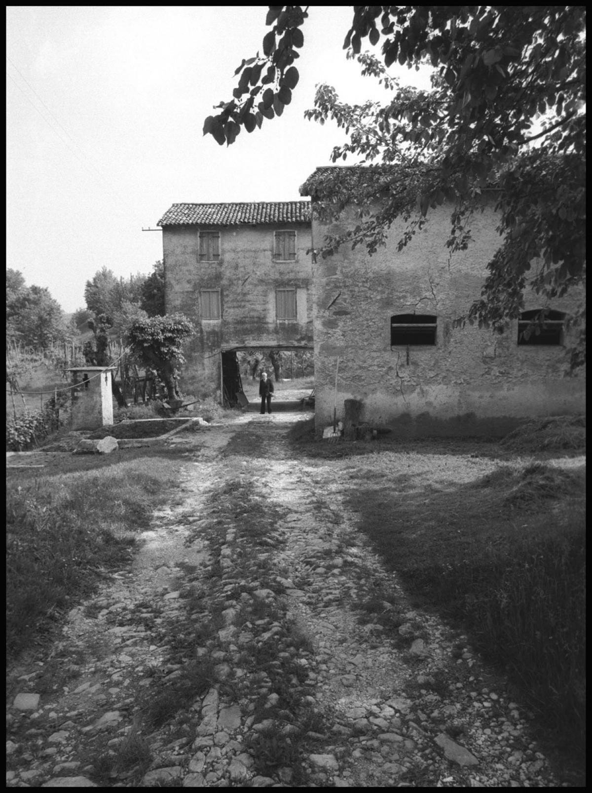Mura Nino, 1986