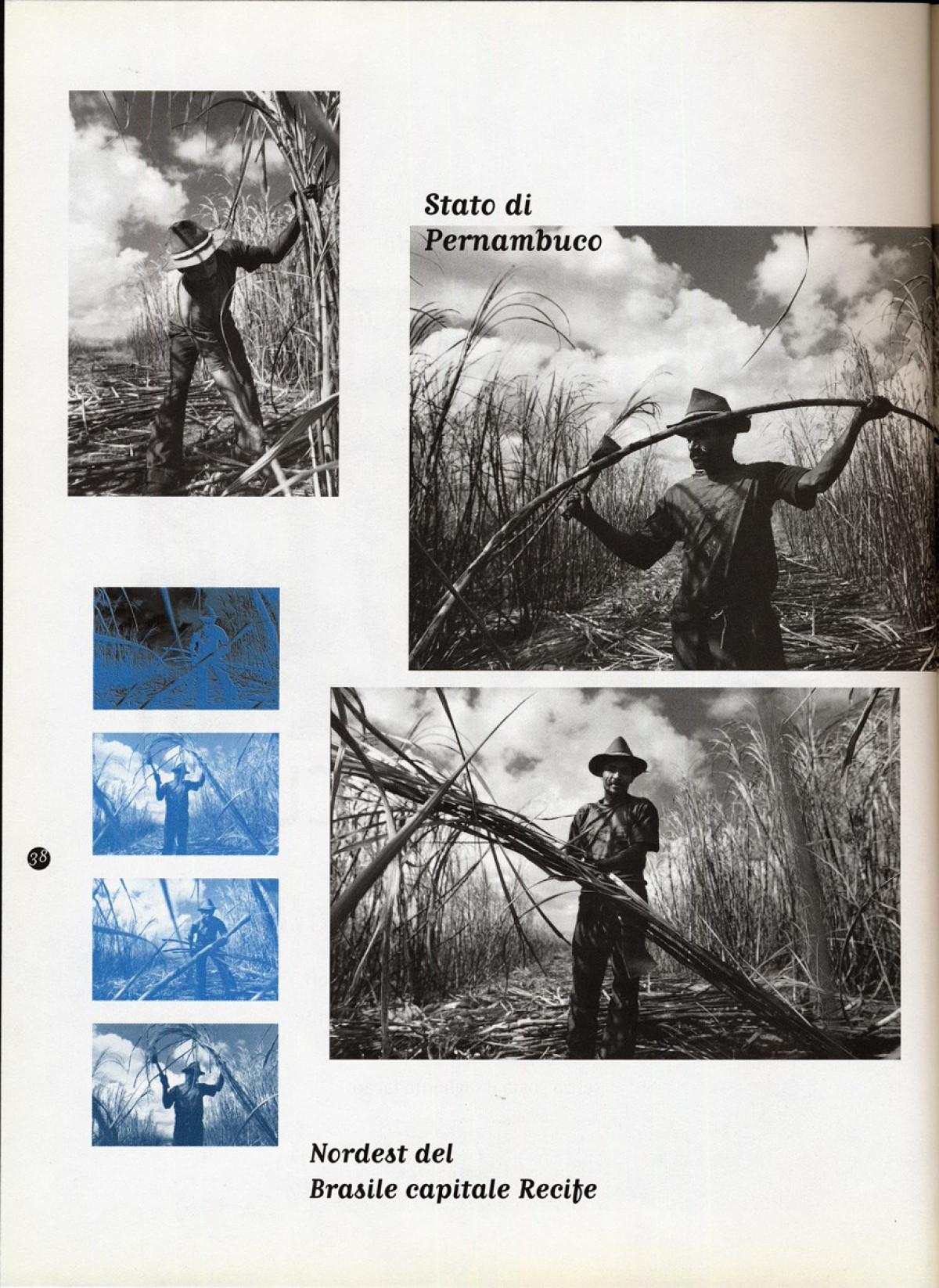 1997 - Sugarcane cutters - Linea d'ombra