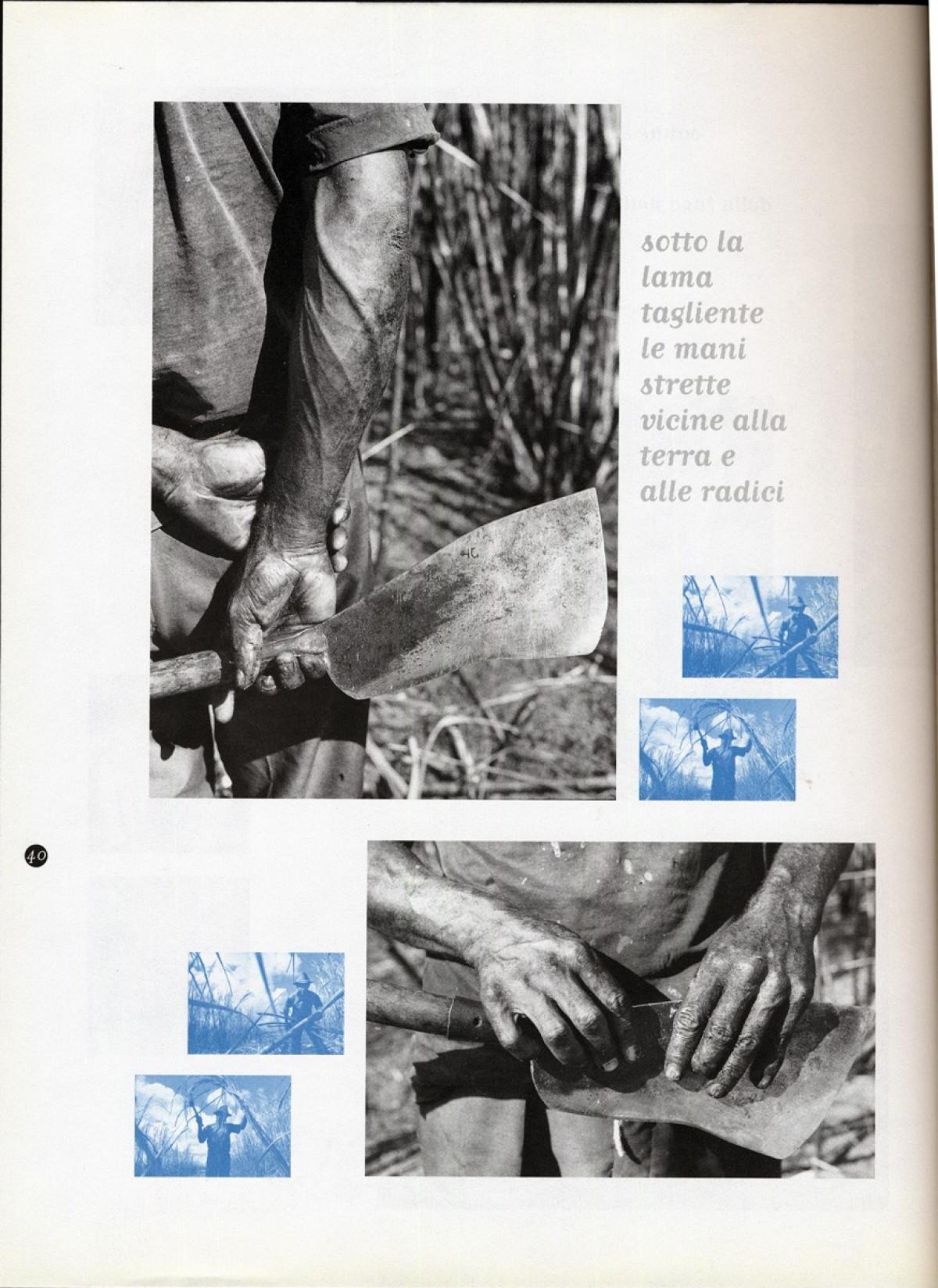 1997 - Sugarcane cutters - Linea d'ombra